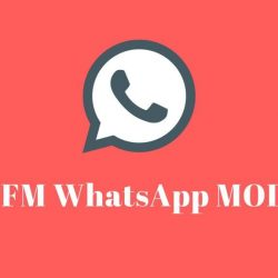 download fmwhatsapp apk.fm fmwa 8.95 terupdate 2021